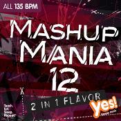 MASHUP MANIA VOL 12